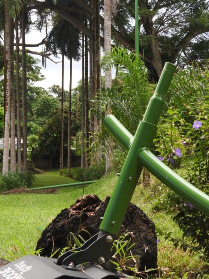 Parc botanique, Mayotte